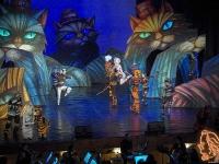 """27.03.2019 - """"Котките"""" - мюзикъл на Държавна опера – Варна"""
