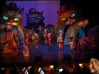 """""""Котките"""" - мюзикъл на Държавна опера – Варна"""